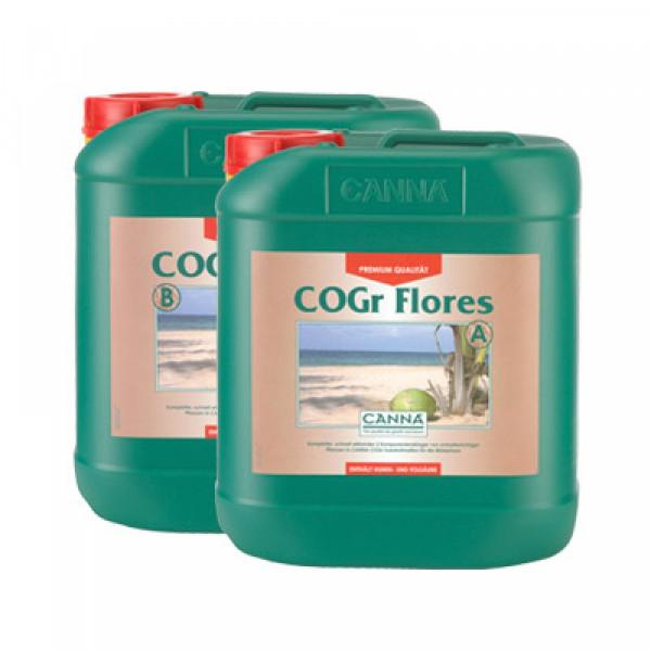 Canna Cogr Flores 5L, Blüte