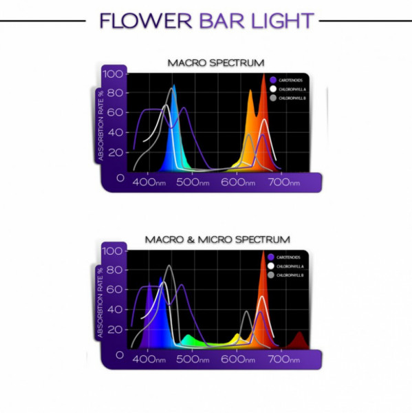 KIND LED Bar Light 60cm micro Blüte