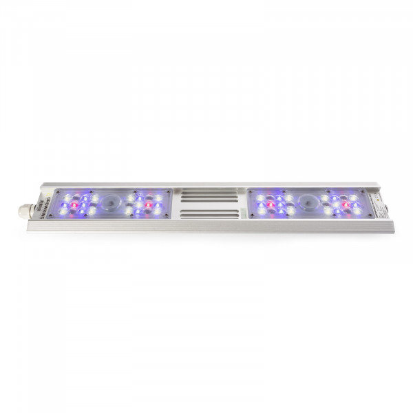 Growking® BluRail 80 Watt LED