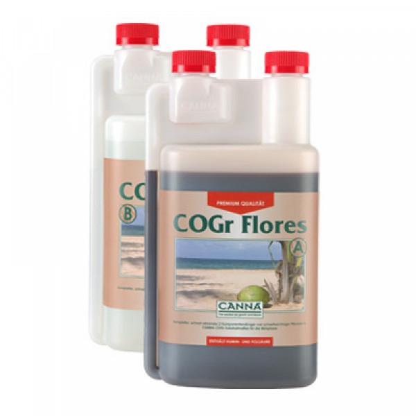 Canna Cogr Flores 1L, Blüte