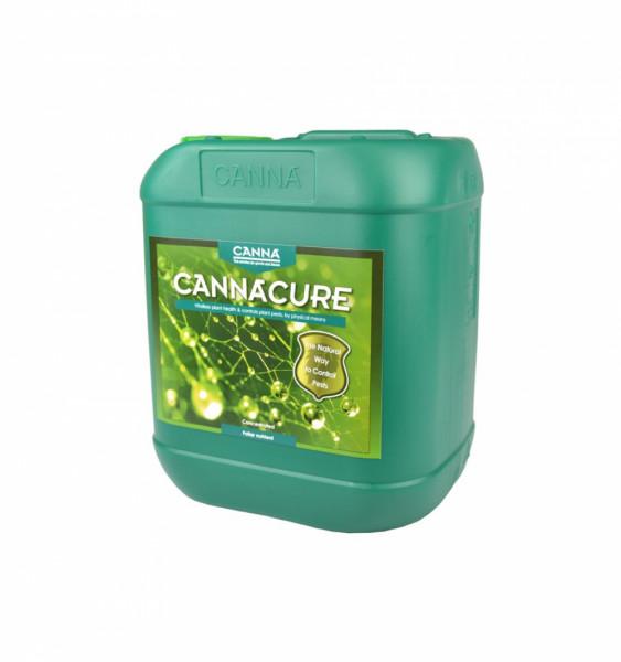 Canna CannaCure Nachfüller 5L (unverdünnt)