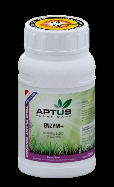 Aptus Enzym+, Leistungsfähige Enzyme, 250ml
