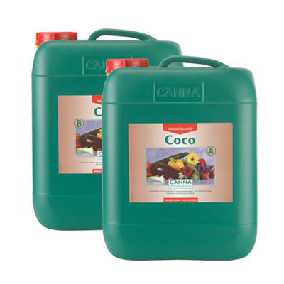 Canna Coco 10L, Wuchs / Blüte