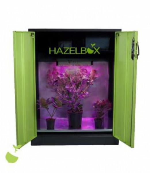 Hazelbox Compact 120cm, LED Growschrank