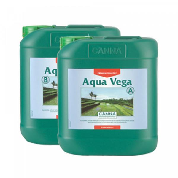 Canna Aqua Vega 5L, Wachstum
