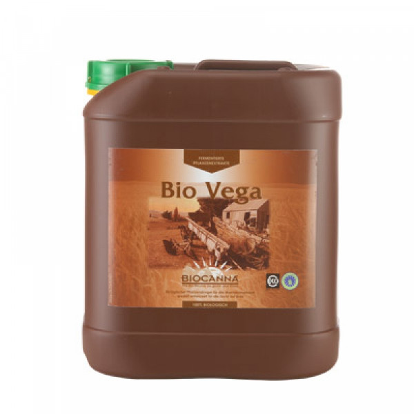 Canna Bio Vega 5L, Wachstum