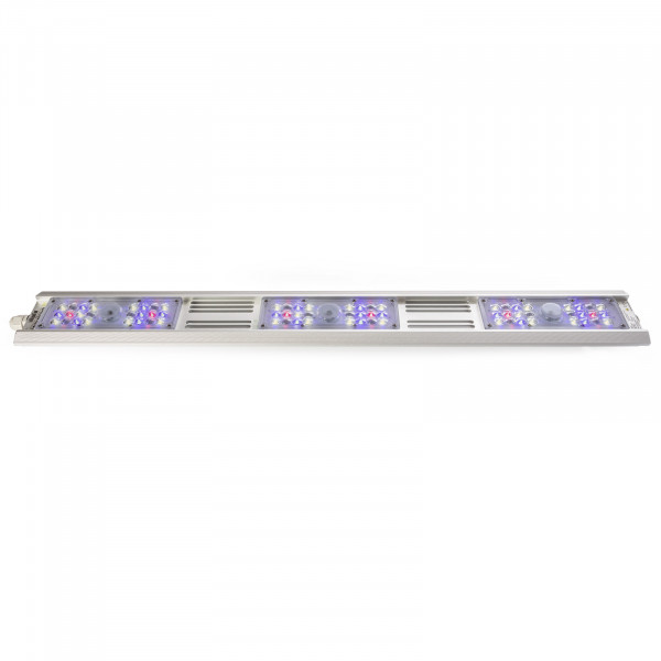 Growking® BluRail 120 Watt LED