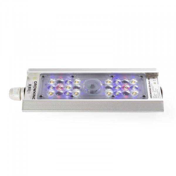 Growking® BluRail 40 Watt LED
