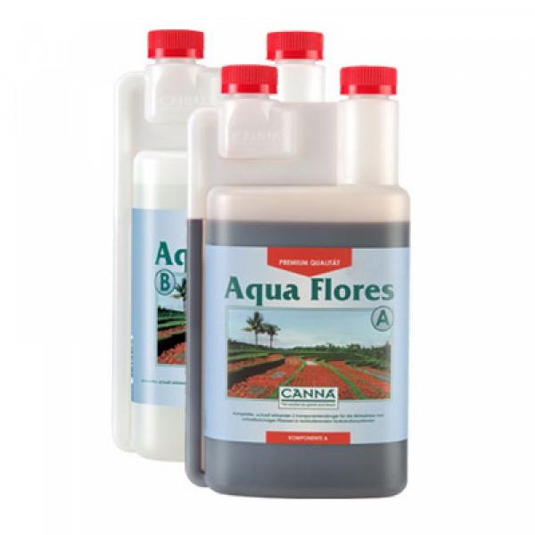 Canna Aqua Flores 1L, Blüte